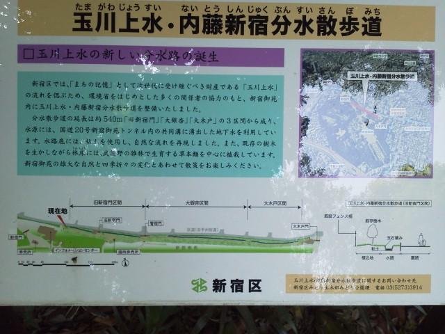 NEC_0531.JPG
